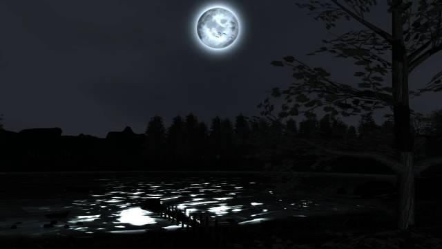 night (1).jpg